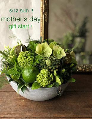 bowl_green